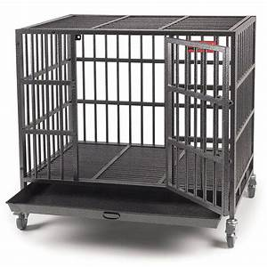 Top rated indestructible dog crates in 2018 us bones for Indestructible large dog crate