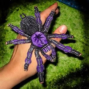 Image Gallery purple tarantula