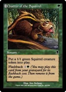 squirrel mtg deck builder chatter of the squirrel magic card