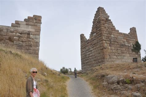 siege bce the siege of halicarnassus 334 bce