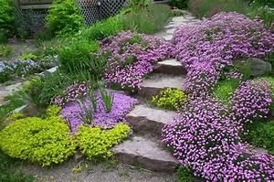 jardin en pente la saponaire jardin potager pinterest With amenager son jardin en pente 2 idee amenagement jardin deco jardin gamm vert