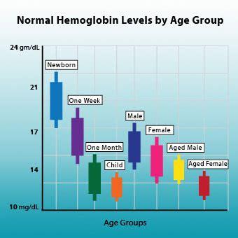 foods to increase hemoglobin home remedies treatment