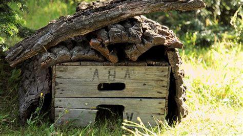 außentreppe bauen mit einfachen mitteln ein igelhaus zum 220 berwintern bauen insekt pindsvin