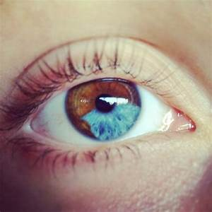 Galleries and Eyes on Pinterest