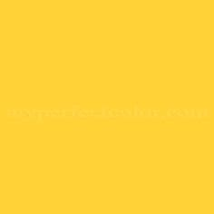 1000 images about sesame bedroom on sesame streets paint colors and big bird