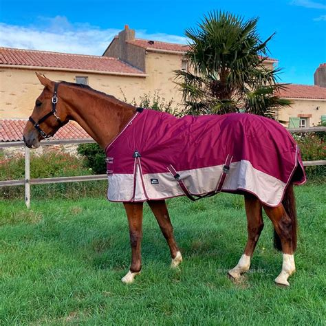 150g turnout rug imper couverture rugs ccgb