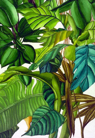 art   tropics images  pinterest tropical