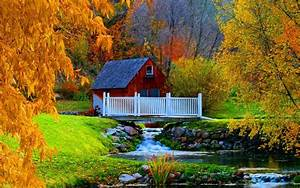 House, In, Autumn, Forest, Image, -, Id, 4541