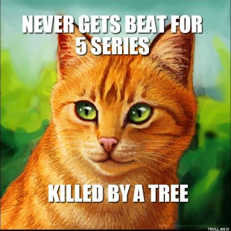 Warrior Cats Memes - 213 best images about warrior cats on pinterest cats medicine and warrior cats
