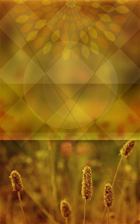 wheat church bulletin cover