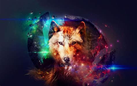 galaxy wolf wallpapers top  galaxy wolf backgrounds