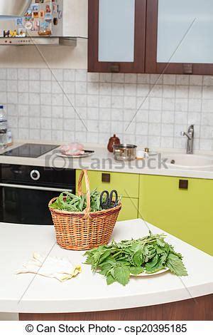 ortie cuisine images de ortie feuilles cuisine ortie feuilles pour