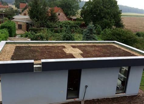 Extensive Dachbegrünung Garage Kosten by Dachbegr 252 Nung Mit Dem Gr 252 Ndach Einen Wichtigen Beitrag