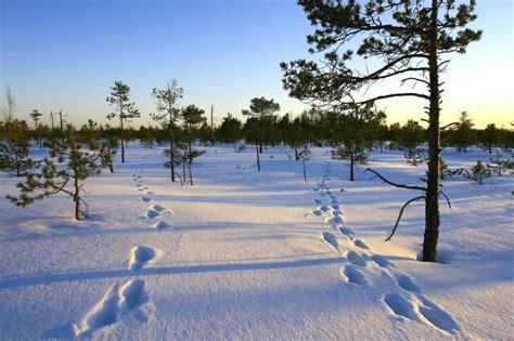 Septiņas idejas aktīvai atpūtai ziemā - Skats.lv