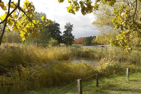 Britzer Garten Herbst by Britzer Garten Berlin Foto Bild Jahreszeiten Herbst