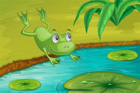 Frog Stock Illustration. Illustration Of Leap, Dive