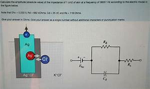 Solved: Calculate The Amplitude (absolute Value) Of The Im ...