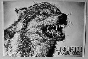 Dire Wolf - Game of Thrones by laurenmarwood on DeviantArt
