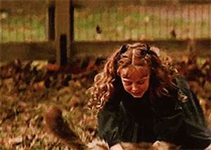 Homeward Bound GIF - Find & Share on GIPHY