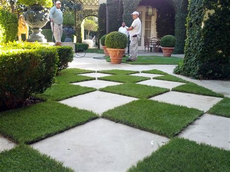 Synthetic Grass San Miguel, Arizona Landscaping Business