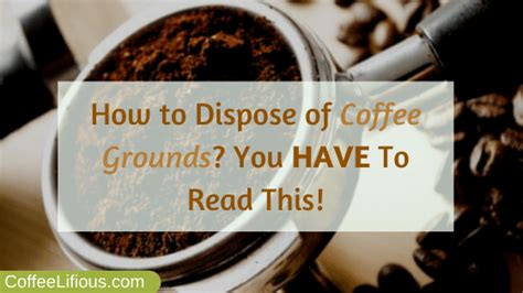 Many people start their day with a fresh, hot cup of coffee. How to Dispose of Coffee Grounds in 2020? 6 Best Ways!