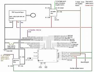 Directed 600  5 Wiring Diagram