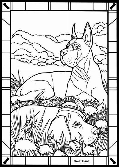 Coloring Pages Dane Adults Danes Dog Colouring