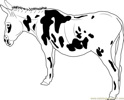 black spotted donkey coloring page  donkey coloring