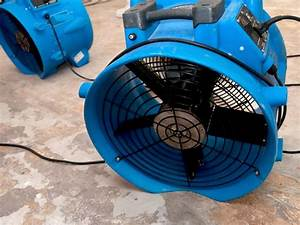 8 tips to prevent mold under water damaged carpets for Floor drying fan rental
