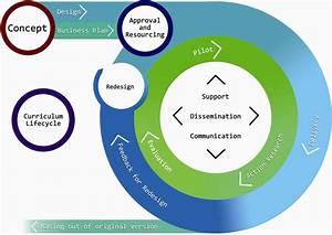 The Design Studio    Curriculum Lifecycle