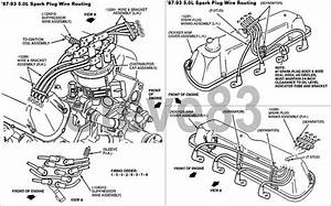 Spark Plug Wire Routing Ford 302