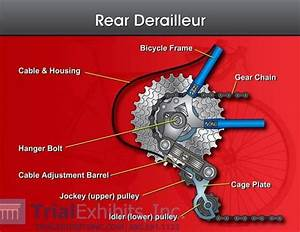 Gear Derailleur Diagram