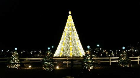 visiting national christmas tree at night how to visit the national tree like a local l daycation dc