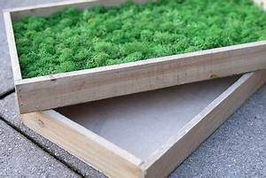 Mooswand Selber Bauen : moosbild und mooswand selber machen selber bauen und selber herstellen moosbilder aus islandmoos ~ Eleganceandgraceweddings.com Haus und Dekorationen