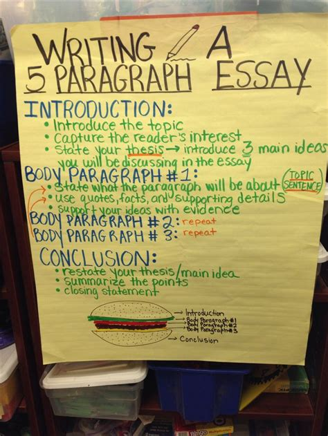 paragraph essay anchor chart  grade writing