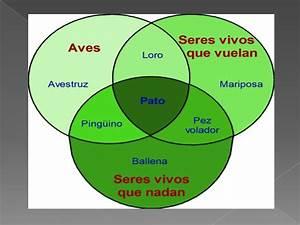 Diagrama De Venn