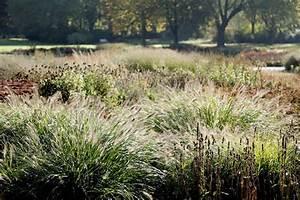 Winterharte Gräser Garten : gr ser eine bereicherung im garten gartenplanung und ~ Michelbontemps.com Haus und Dekorationen