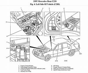 I Have A 95 Mercedes C220  The Radiator Fans Do Not Work