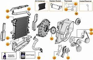 16 Best Images About Jeep Wagoneer Sj Parts Diagrams On