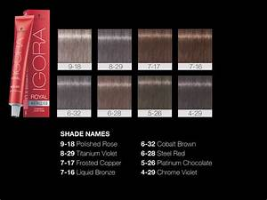 Salon Hair Colour Chart Schwarzkopf Professional Igora Royal Metallics Color