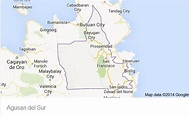'Hot' logs seized from wood processing plant in Agusan del ...