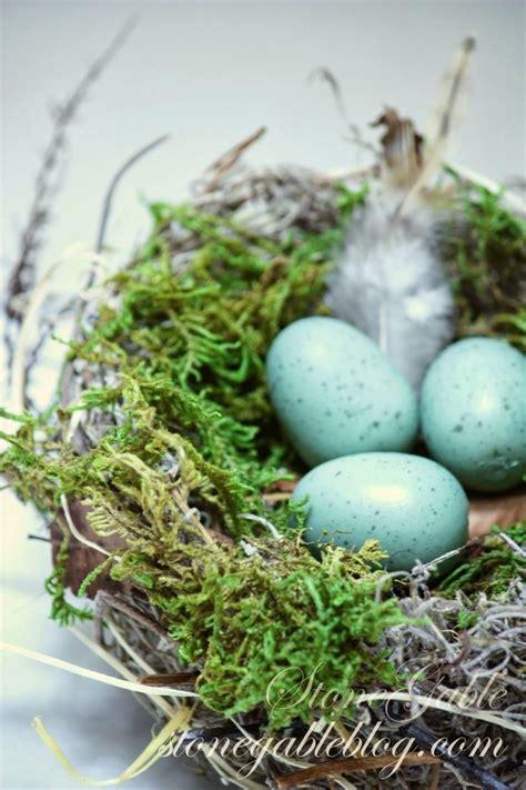 spring bird nest tutorial homemade    rain