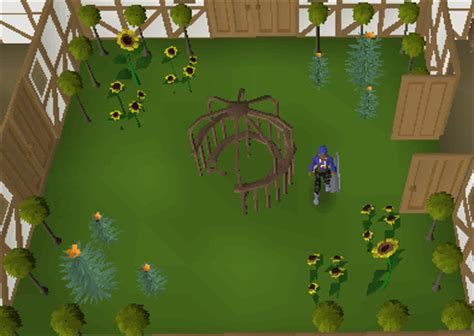 Topiary Hedge  The Runescape Wiki
