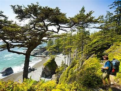 Sooke Coast West Trail Hiking Bc Trails