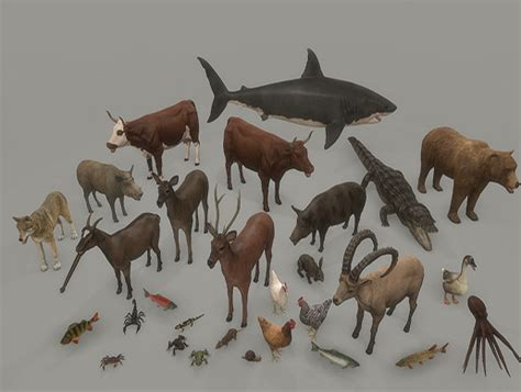 animal pack deluxe asset store