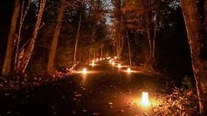 Headlands Dark Sky Park Events  Dark