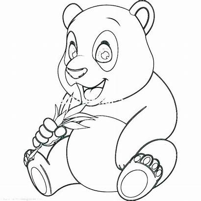 Panda Coloring Pages Bear Anime Printable Drawing
