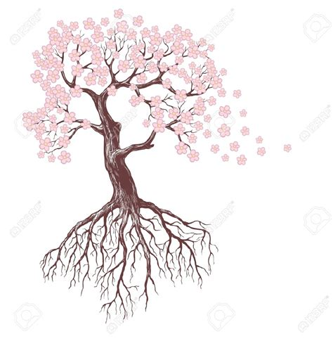 apple tree with roots drawing trees with roots drawing at getdrawings free for