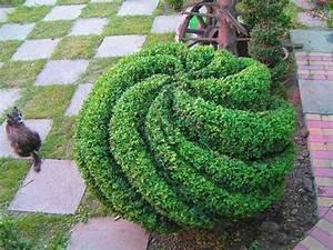 De 20 basta ideerna om topiary garden pa pinterest for Marqueyssac topiary gardens philippe jarrigeon