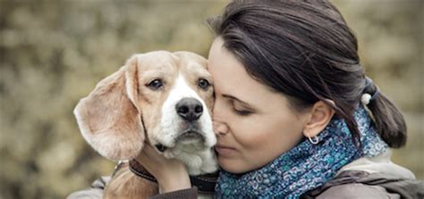 comfort  avoid hurting  friend   dog dies
